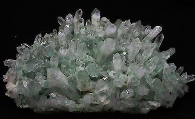 "2010g Top Rare beautiful Green Ghost ""Pyramid"" Quartz Crystal Cluster specimen"