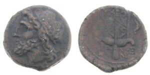 275-215-BC-Syracuse-Sicily-AE20-Coin-Hieron-II-Poseidon-Trident-Dolphins-Greek