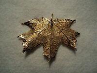 Genuine Maple Leaf Pin Gold Beautiful