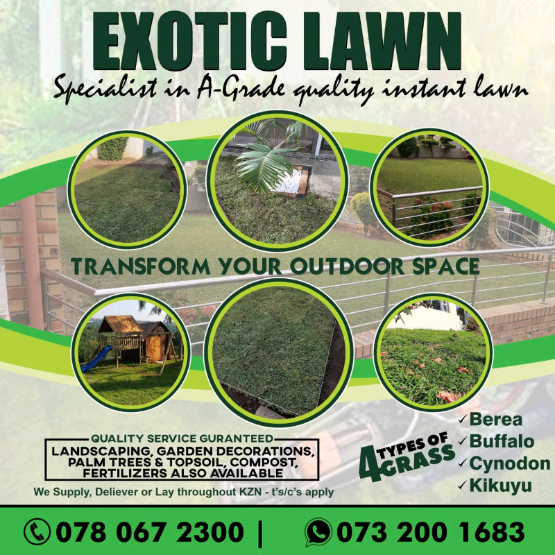 EXOTIC LAWN/GRASS FOR SALE