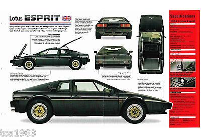 1981/1980/1979 Lotus Esprit Imp Brochure