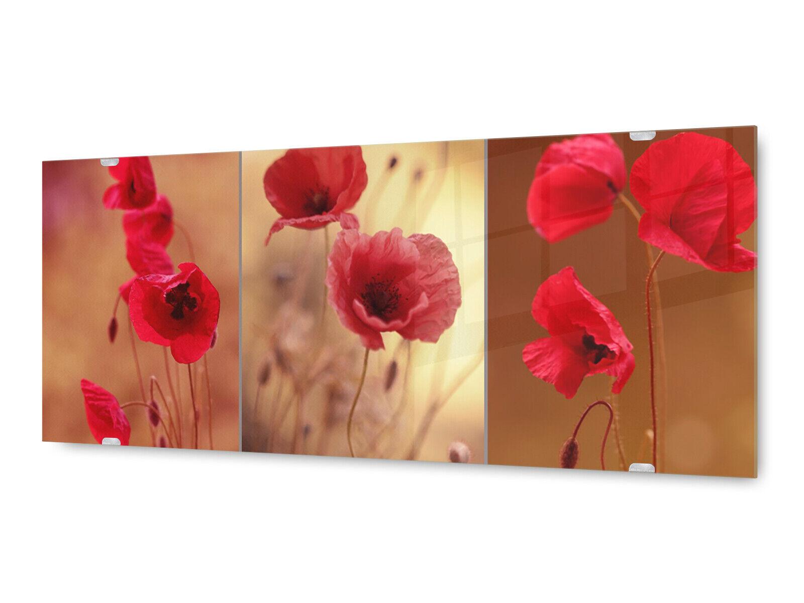 Glasbild Wandbild GLX12579208994 Collage Blüten  MohnBlaume 125 x 50cm
