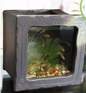 Aquarium Fish Tank Kingyo Goldfish Shigaraki Yaki And Glass Made In