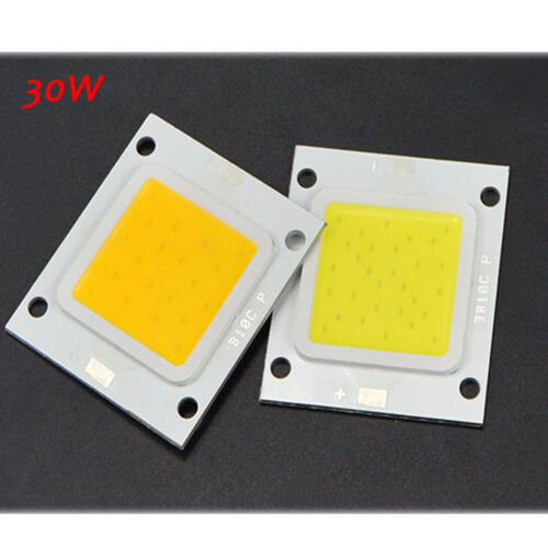 High Power COB LED Driver Supply 10W 20W 30W 50W 100W Waterproof LED Chip Bulb