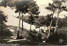 Carte postale, La dune du PYLA, bassin d'arcachon, Gironde, écrite en 1956.
