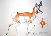 Nra Life-size Game Targets Mix (antelope, Bear, Deer), 60 X 42 (3 Folded)