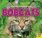 Bobcats by Aaron Carr (Hardback, 2015)