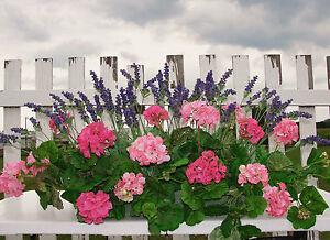 "Patio Party for 18""L-24"" Window Box Silk Pink Geraniums Lavender Silk Flowers"