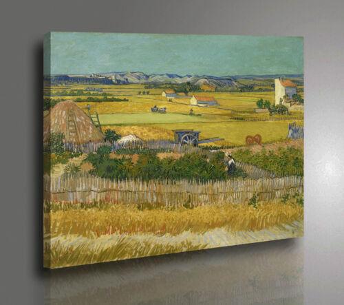 Vincent Van Gogh De Oogst Quadro La Mietitura Stampa su Tela effetto Dipinto