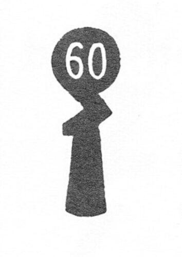 CHUBB SCHLÜSSEL Nr.13-60 WOHNUNGSTÜR EINSTECKSCHLOß SCHLÜSSEL SCHULTE-SCHLAGBAUM