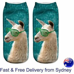 Smart cool Alpaca with sunnies socks - Clever llama maths formula novelty