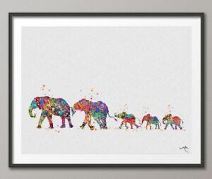 Lesbian elephants