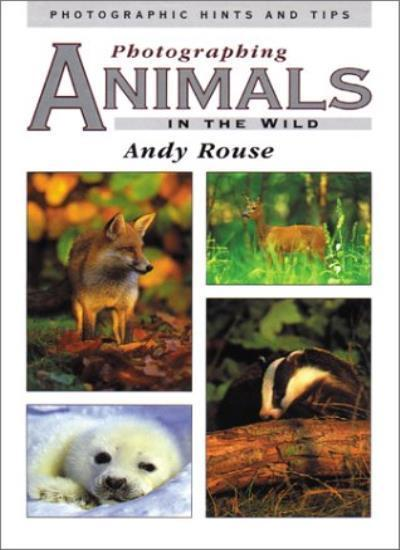 Photographing Animals in the Wild (Photographic hints & tips) By Andy Rouse