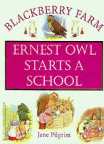 Ernest Owl Starts a School (Blackberry Farm S.) By Jane Pilgrim