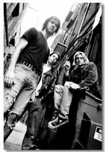Poster Kurt Cobain Nirvana Pup Singer Star Club Art Wall Cloth Print 208