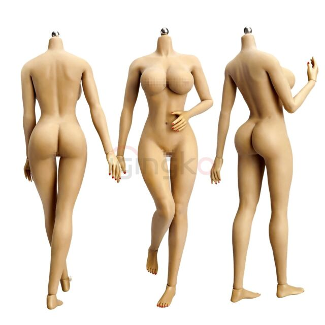 "1//6 Women Figure Head Sculpt /&Female Body for 12/"" Hot Toys//Phicen"