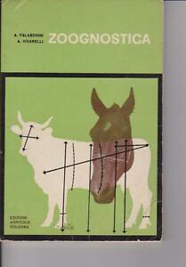 Amical Zoognostica - A.falaschini A.vivarelli - 1974 - Edizioni Agricole Bologna