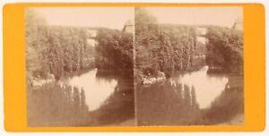 Pont Foto Viron Pesanti Stereo PL56L2n Vintage Albumina