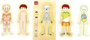 Körper - und mehrfachbehinderte Menschen