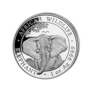 SOMALIE-100-Shillings-Argent-1-Once-Elephant-2021