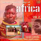 The Most Beautiful Songs of Africa, Vol. 2 by Various Artists (CD, Sep-2011, ARC)