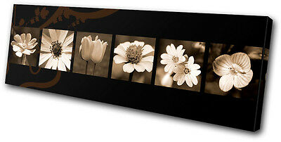 Floral Abstract Flowers SINGLE CANVAS WALL ART Picture Print VA