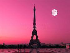 PRINT POSTER PHOTO CITYSCAPE PARIS FRANCE DAWN PINK MOON EIFFEL TOWER LFMP0299