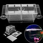 Aquarium Pet Fish Tank Guppy Double Breeding Breeder Rearing Box Hatchery S/L