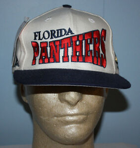 save off 3124d 8a39d Image is loading Vintage-Apex-One-Florida-Panthers-Big-Side-Logo-