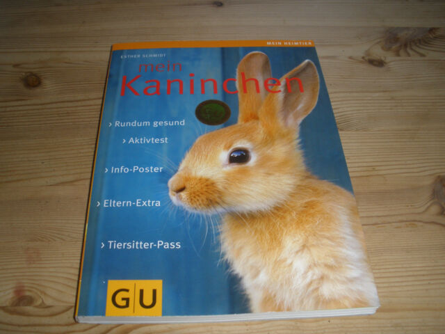 Mein Kaninchen von Esther Schmidt (2009, Taschenbuch)