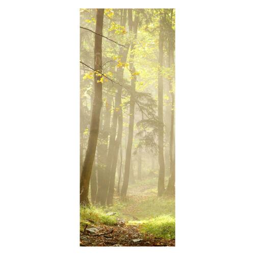 Türtapete Waldweg Tapete Türbild Wandbild M0024 Tür-Aufkleber