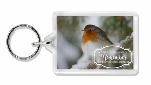 Little Robin Red Breast Photo Keyring Animal Gift Robin-1K