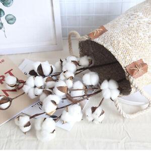 White-Naturally-Dried-Cotton-Flower-With-Stem-DIY-Decorative-Wedding-Decor-G9A
