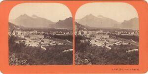 Suisse Foto J.Fetzer Ragaz Stereo Vintage Albumina Ca 1865