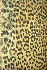 A4 Photo Endpaper British Central Africa 1897 Leopard print 1 Print Poster