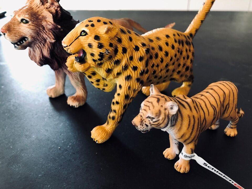 Dyr, Løve/Tiger