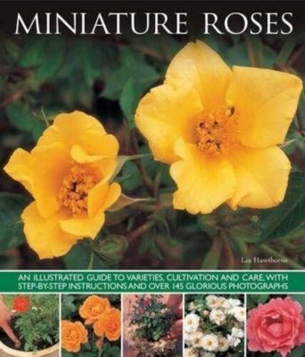 "1 of 1 - ""VERY GOOD"" Lin Hawthorne, Miniature Roses, Book"