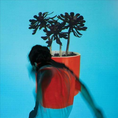 LOCAL NATIVES SUNLIT YOUTH [LP] * NEW VINYL RECORD