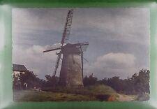 CPA Holland Rijswijk Windmill Moulin a Vent Windmühle Molino Mill Wiatrak w291