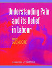 Understanding Pain and Its Relief in Labour by Susan Moore (Paperback, 1996)
