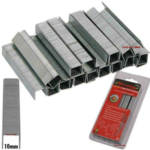 4 IN 1 STAPLE GUNS 1250 PIECE 10mm SQUARE FLAT STAPLES 1.2 x 10 x 10.6mm FOR 3
