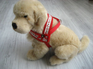 Hundegeschirr-Umfang-31-40-cm-Hundehalsband-Halsband-Hundebekleidung-Geschirr
