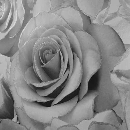 MADISON ROSE GLITTER FLORAL WALLPAPER GREY SILVER MURIVA 139520