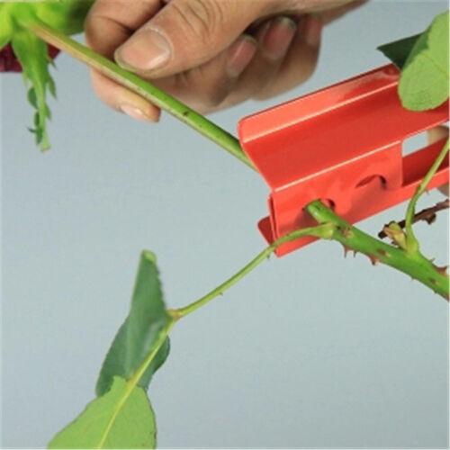 Metal Rose Thorn Stem Foliage Stripper Tool Spring Actions WeddingFresh-FlowerEP
