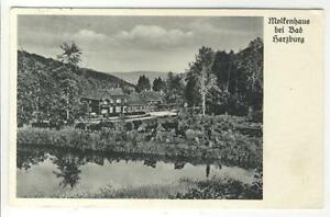 AK-Bad-Harzburg-Molkenhaus-Kuehe-1937