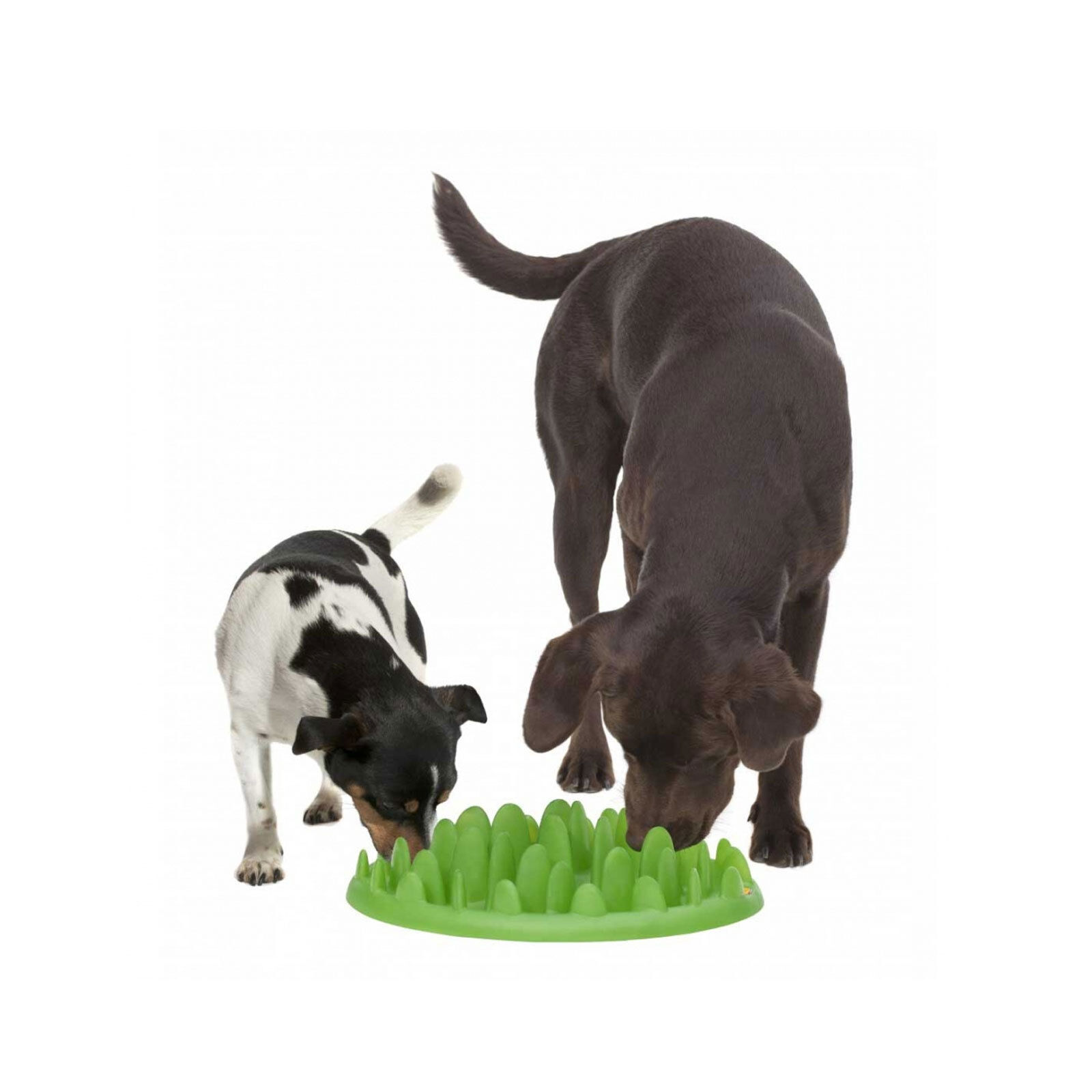 Green Interactive Slow Feeder Dog Puppy Cat Challenge Dishwasher Safe Food Bowl