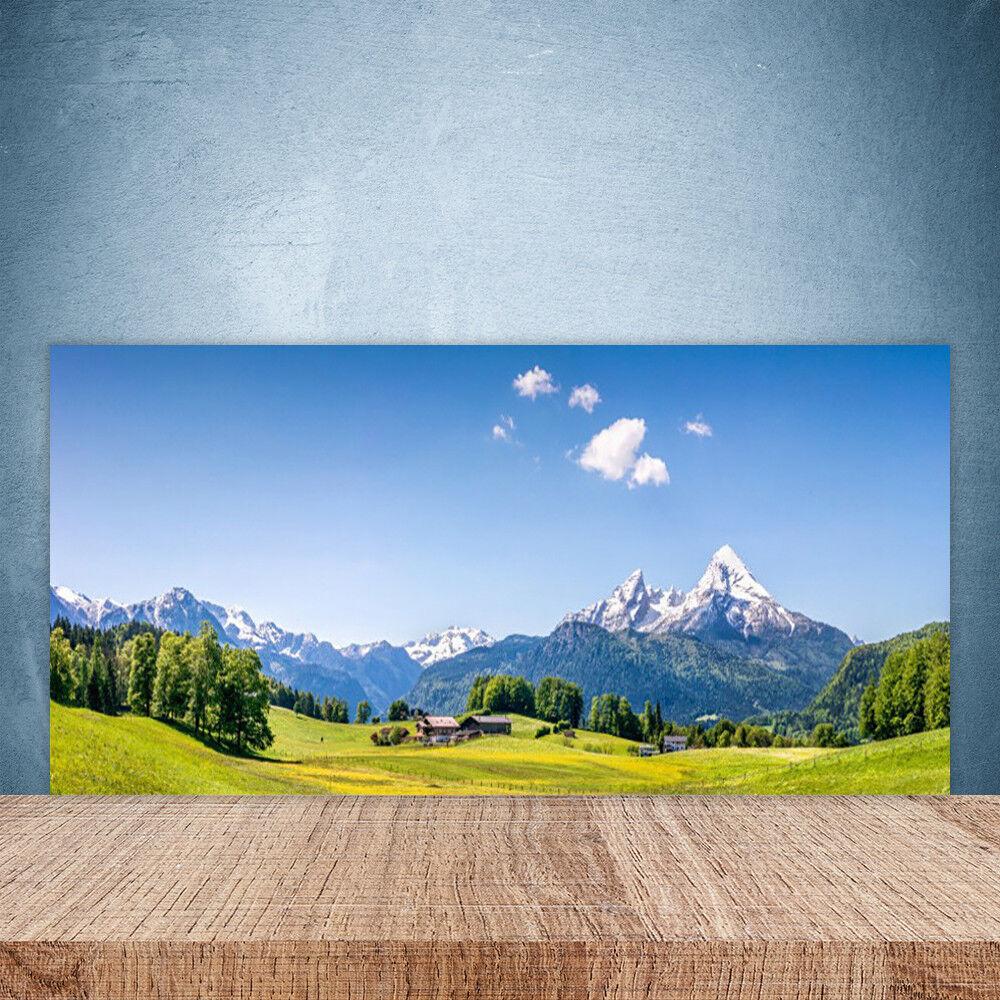 Crédence de cuisine en verre Panneau Paroi 100x50 Paysage Arbres Montagnes