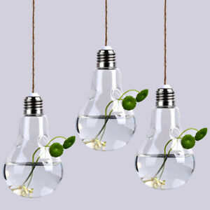 3 Pcs Bulb Shape Hanging Flower Hydroponic Planter Glass Terrarium