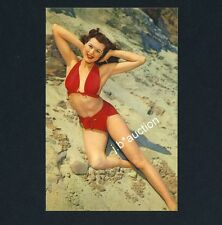Pinup BIKINI GIRL BEACHWEAR / MÄDCHEN IN DEN DÜNEN Bademode * AK um 1950 PC