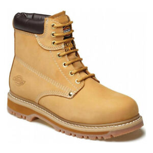 Dickies-Cleveland-Super-Safety-Boots-Steel-Toe-Cap-amp-Midsole-Workwear-FA23200